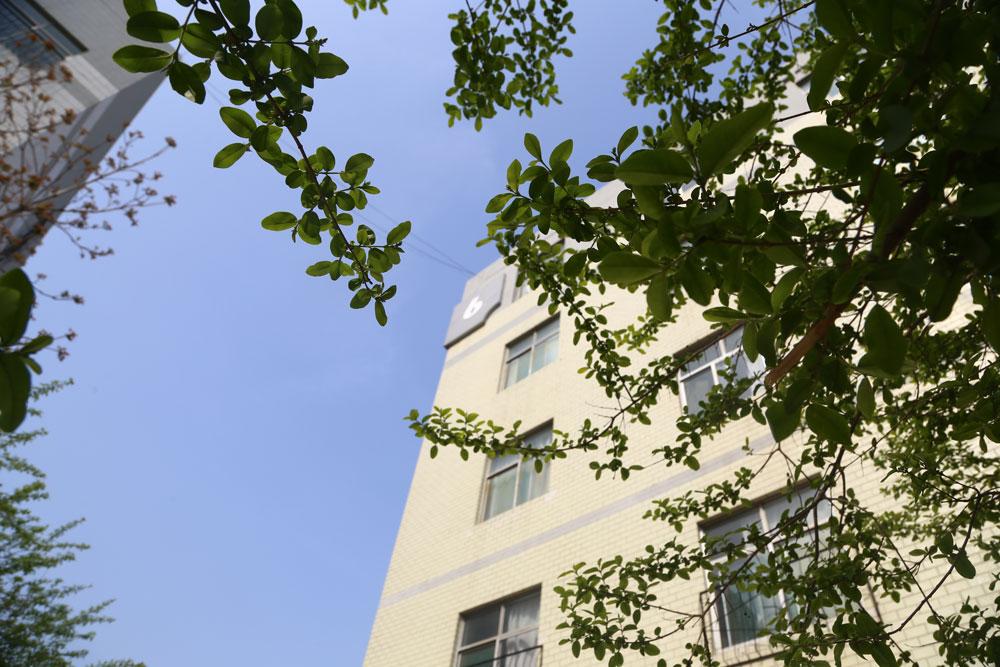 学院春天风景图